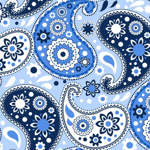 Blue and White Paisley Print