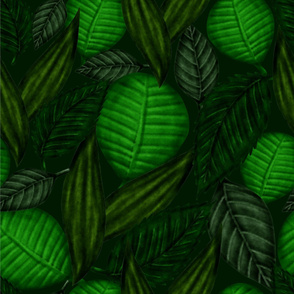 Tropic_leaves_