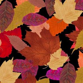 Autumn Leaf Pile on Black