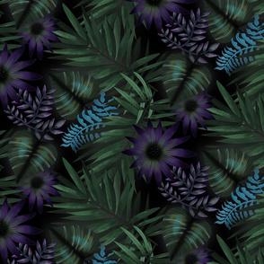 Rainforest dreaming