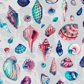 Aquashells