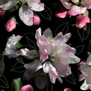 Moody blooms 24x24