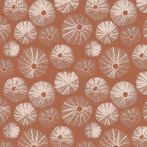 sea-urchin-note-paper-terracotta