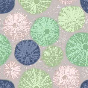 Rustic Sea Urchins   Sea Glass