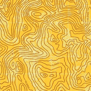Topographic Map [Tan - Relief]