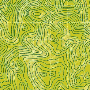 Topographic Map [Green - Relief]