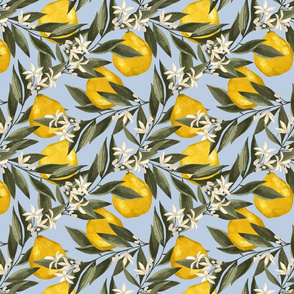 Le jardin botanique. Yellow Bergamot. Citrus Fruits. Summer pattern with green leaves on blue