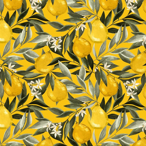 Le jardin botanique. Yellow Bergamot. Citrus Fruits. Summer pattern with green leaves on yellow