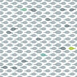 gray_fish2_white
