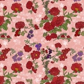 Cottage Rose, Red Flowers on Peachy Pink Star Background