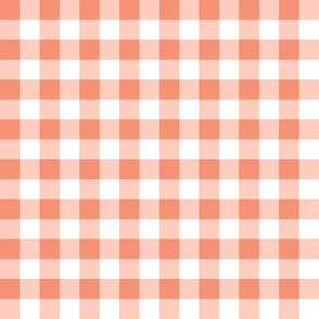 Small Peach Gingham Spring Summer Cottagecore Plaid Check