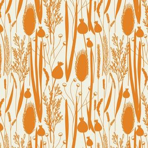 Wild Grasses-Sunlit Orange & Cream