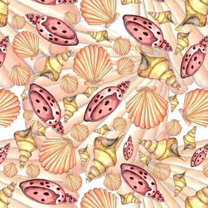 Mini Seashells on the Sea Shore