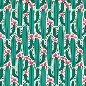 Cactus Country - Small Scale Teal Pink