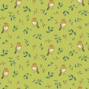 robin small green