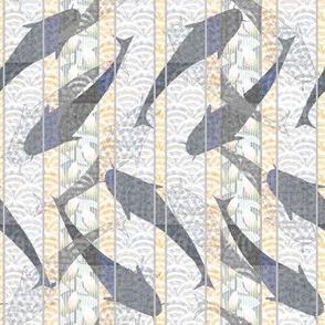 fishstripe2