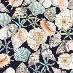 Dark Glorious Shells