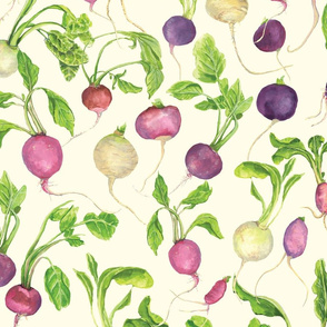 radishes in pale yellow