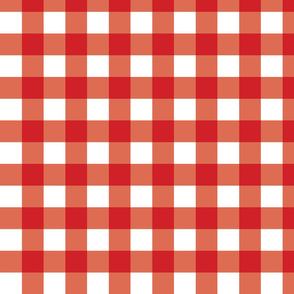 Red Gingham - Medium (Fall Rainbow Collection)