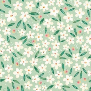Daisy Flowers and Peaches // Spring Blossom , Girl´s Fabric, Cute Walpaper // Cream, Peach, and Green