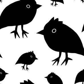 Little Black Bird Family