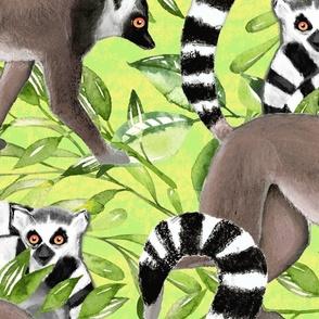 Lemurs in the Jungle Large Format