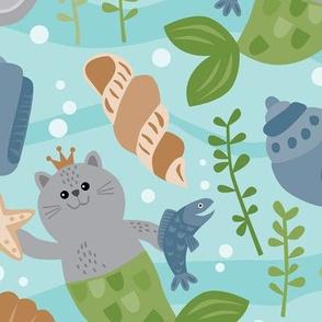 Shelly Cats