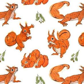 Squirrel Fabric