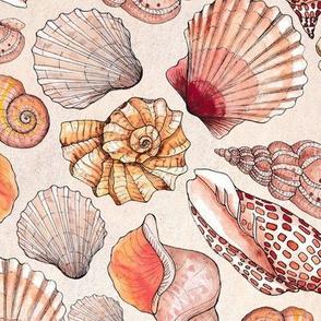 Sea Shells Watercolor