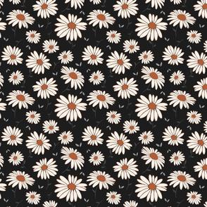 Sweet Daisy in Noir