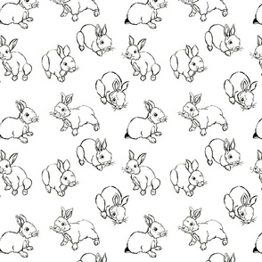Baby bunnies in black and white
