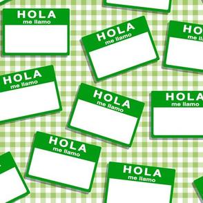 insignia hola me llamo - green on green gingham