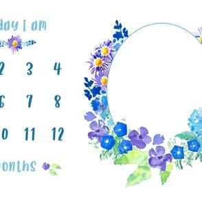 Blue floral baby milestone blanket photo backdrop