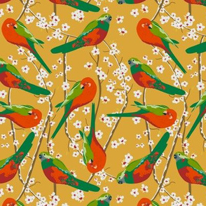 king parrots in blossom on mustard (small scale)