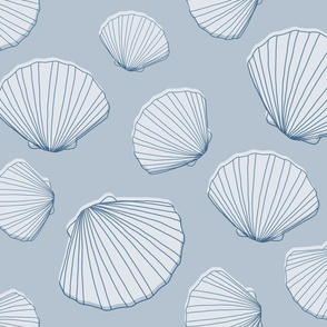 Scallop Seashells, Large