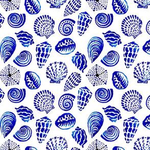 blue seashells mid scale