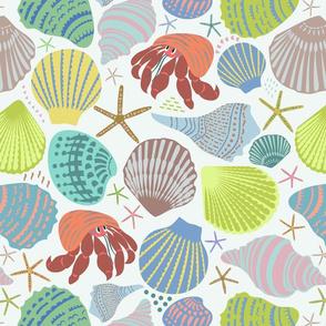 Seashell - geometric