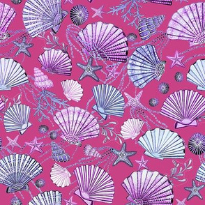 seashell and starfish with seaweed lilac, fuchsia pink and blue