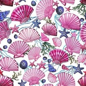 seashell and starfish with seaweed fuchsia pink and  blue