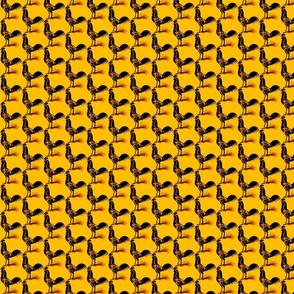 inside_chicken yellow