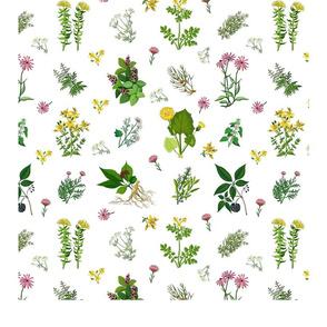 Floral Herbs Tea Towel