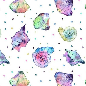 Rainbow seashells - watercolor summer ocean vibes a241-1
