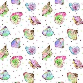 rainbow seashells - watercolor summer ocean vibes a241-2