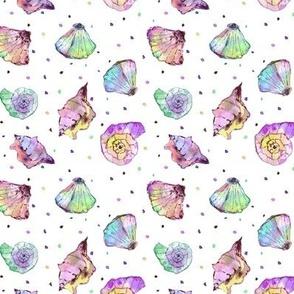 rainbow seashells - watercolor summer ocean vibes a241-3