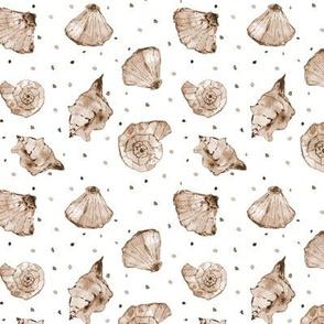 Earthy boho seashells - watercolor summer ocean vibes a241-7