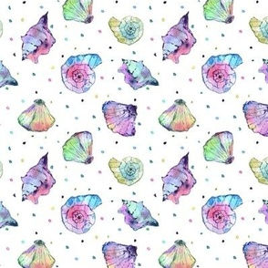 rainbow seashells - watercolor summer ocean vibes a241-1