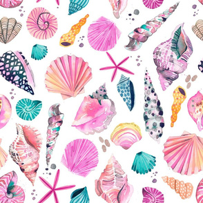 Sea shells Pink blue Medium