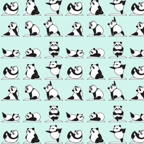 Panda Yoga turquoise_8x8