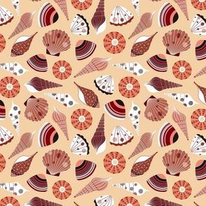 Seashells in the beach