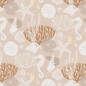 seashells and corals on sand